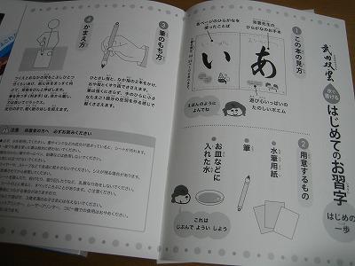 武田双雲氏ひらがなお手本帳